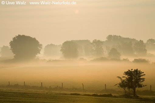 Morgenrot und Nebel Mecklenburg Vorpommern / Sunrise in the morning mist
